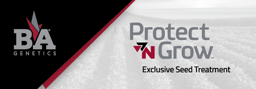 Protecting Your Investment – Advantage of Planting B&A Genetics® Protect 'N Grow™-Treated Seed